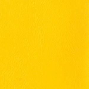 ярко-желтый 1003