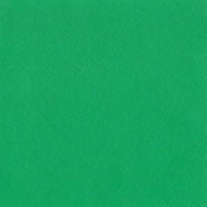 ярко-зеленый 6002
